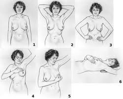 Breast cancer examination (1/3)